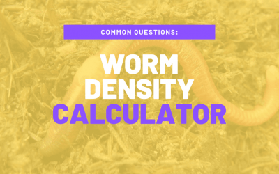 How Many Worms Do I Need to Start a Worm Compost Bin?